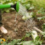 recuperare gli scarti acque di vegetazione frantoio - Natyoure - www.natyoure.it